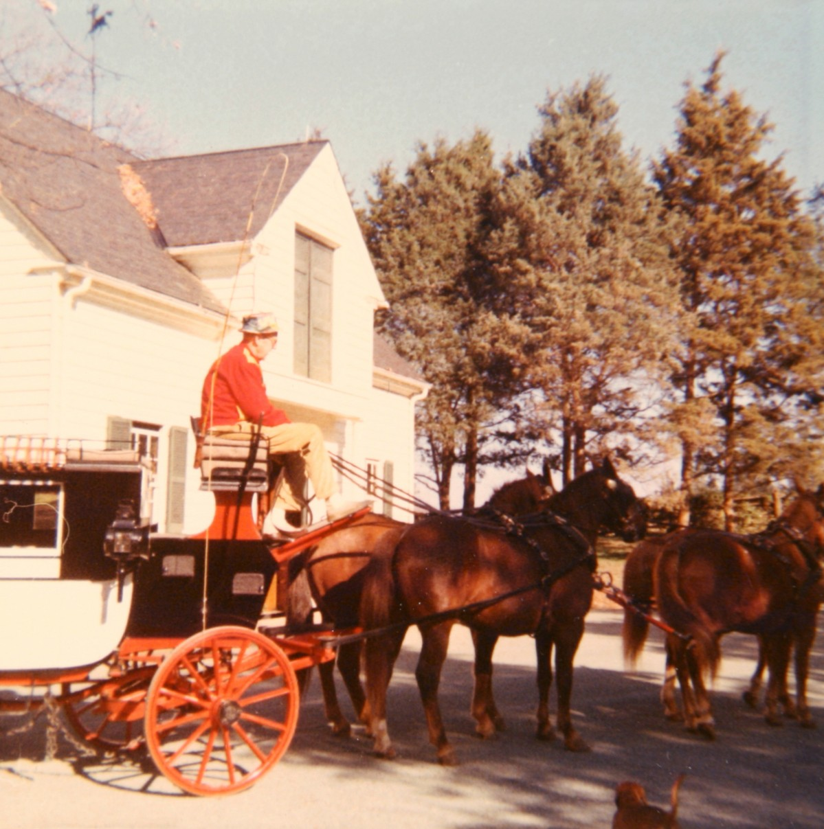Vintage photograph of man and horse drawn carriage