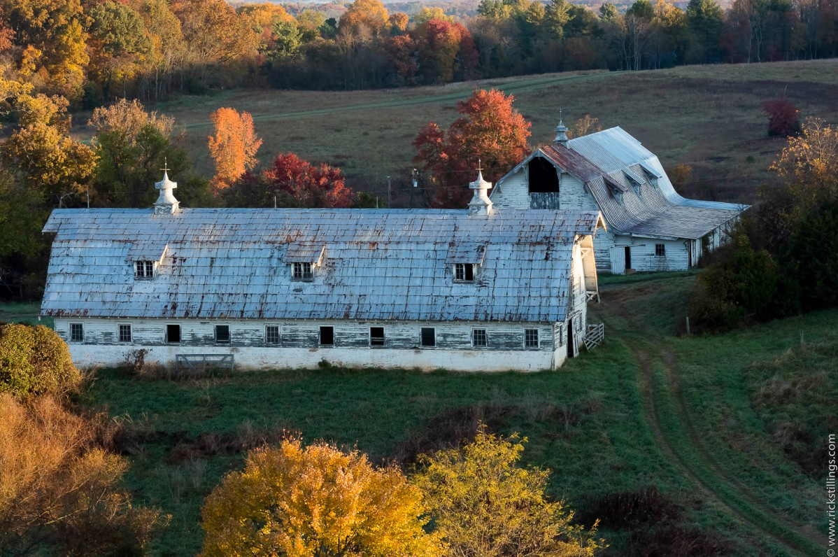 Two old barns in pastoral setting