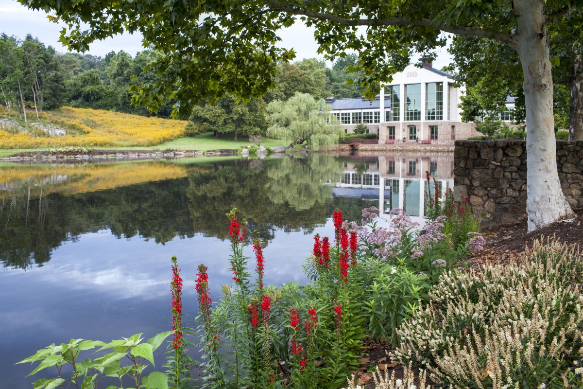 A pond sits between an office building and colorful wild flowers